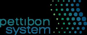 The Pettibon System